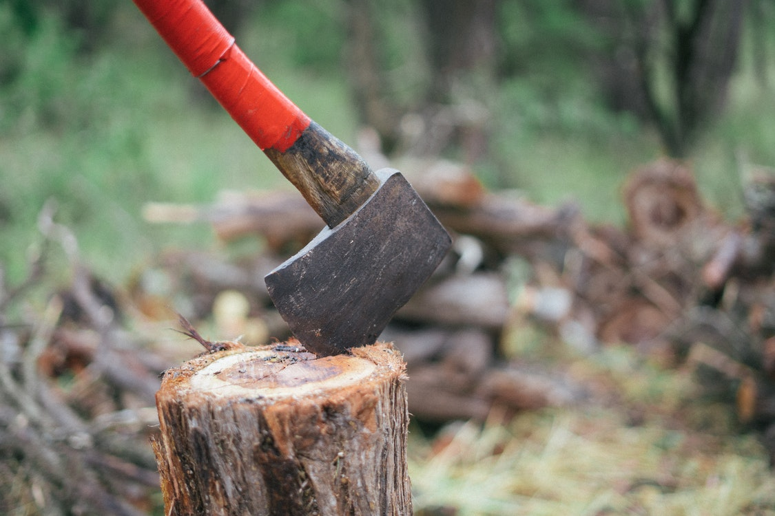 Easy Ways to Remove Tree Stumps – Basic Guidelines You Should Follow